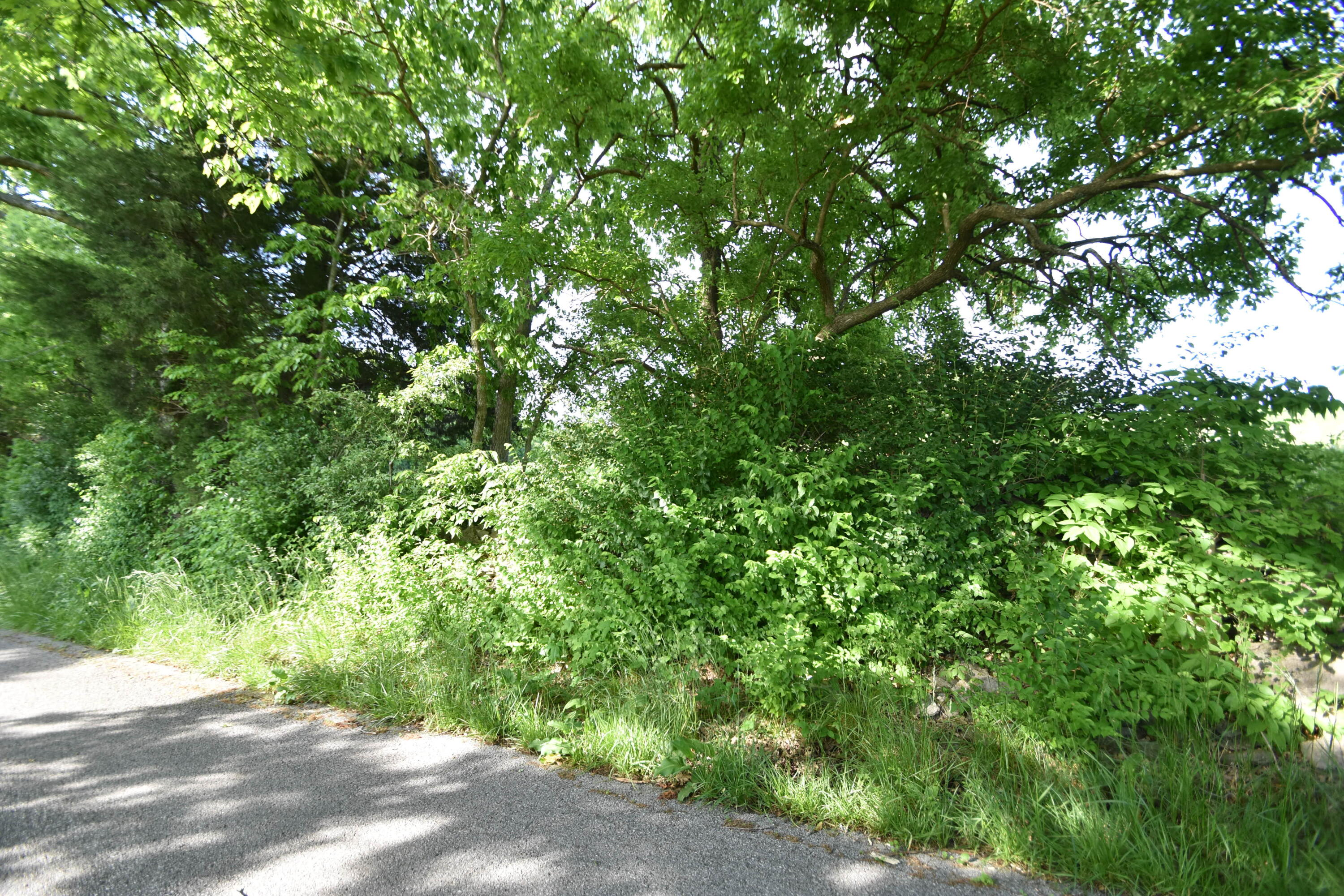 1 A.T. Dean Road #Tract 2 Property Photo 1