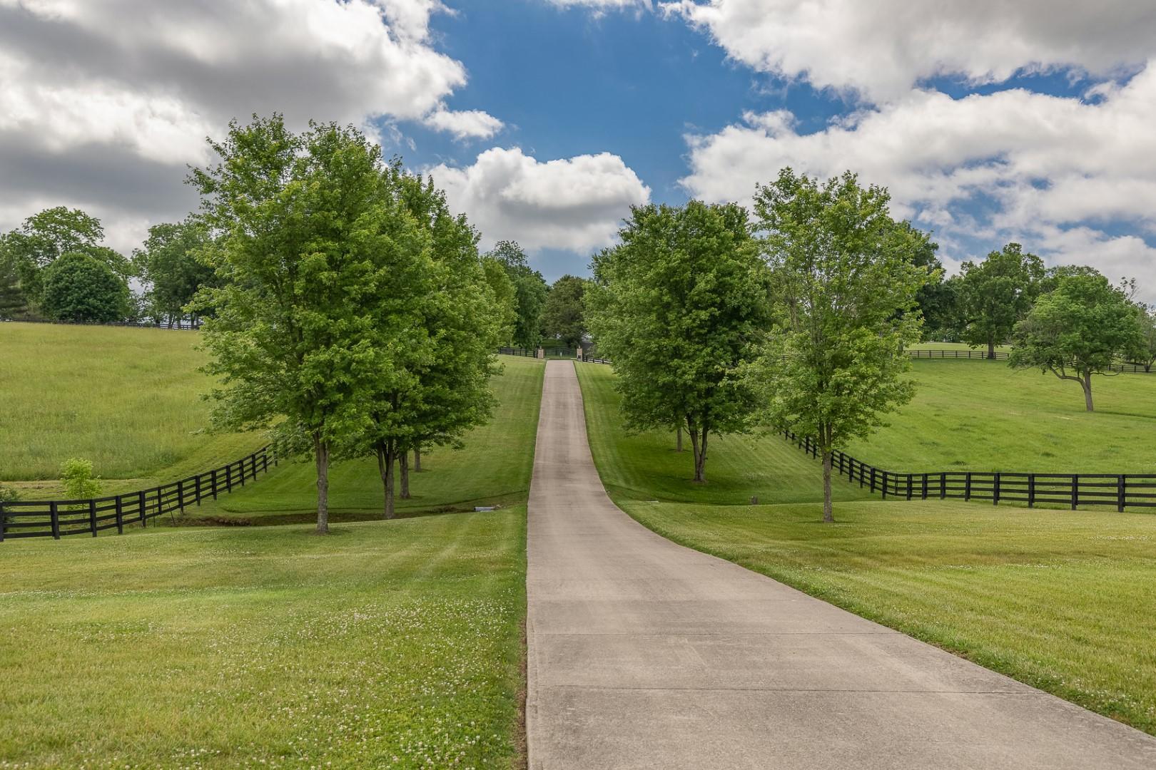 2955 Mcclure Road Property Photo 3