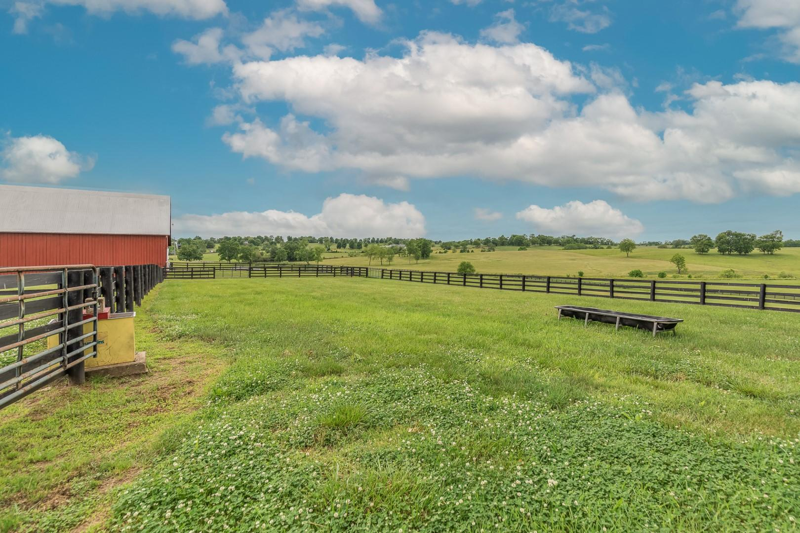 2955 Mcclure Road Property Photo 62