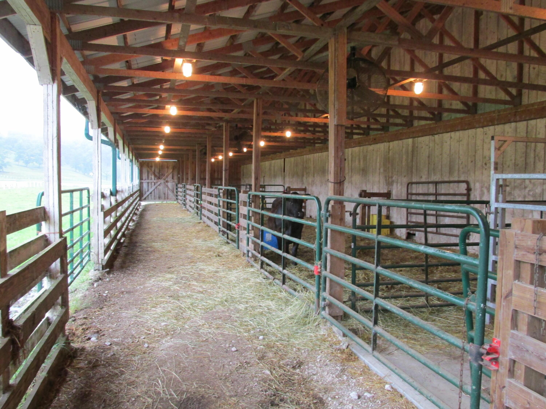 7857 Hwy 460 Property Photo 83
