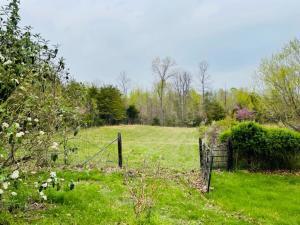 1400 Shepola Road Property Photo 39