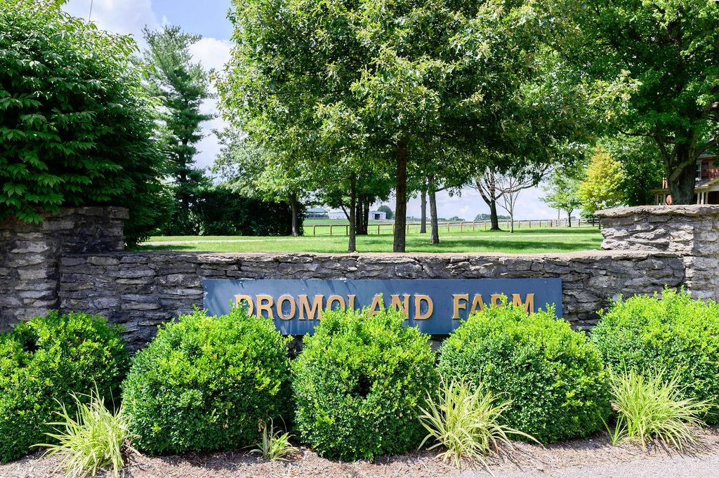 3589 Spurr Road Property Photo 3