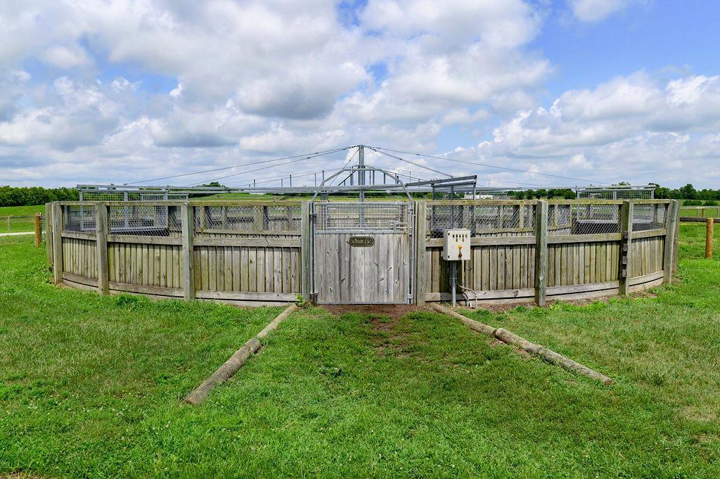 3589 Spurr Road Property Photo 48