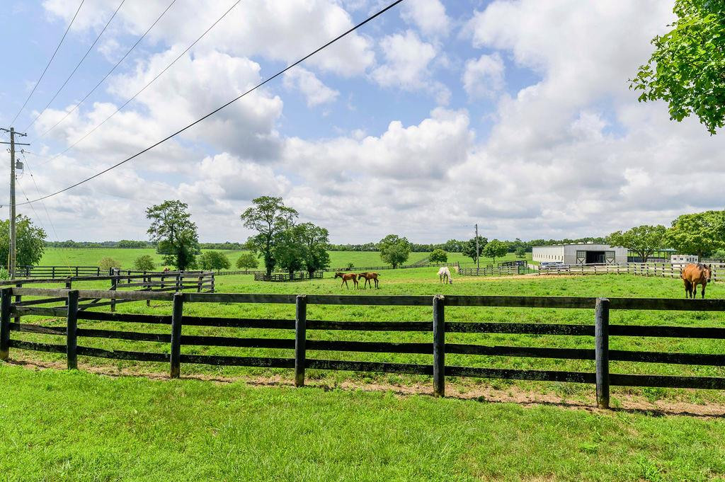 3589 Spurr Road Property Photo 57