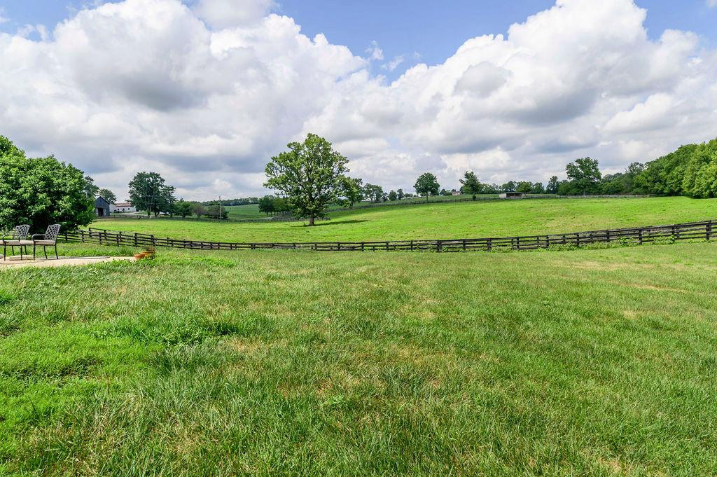 3589 Spurr Road Property Photo 64
