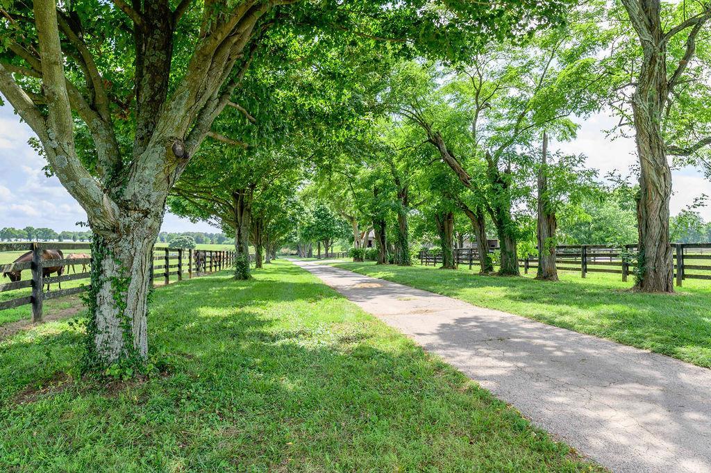 3589 Spurr Road Property Photo 67