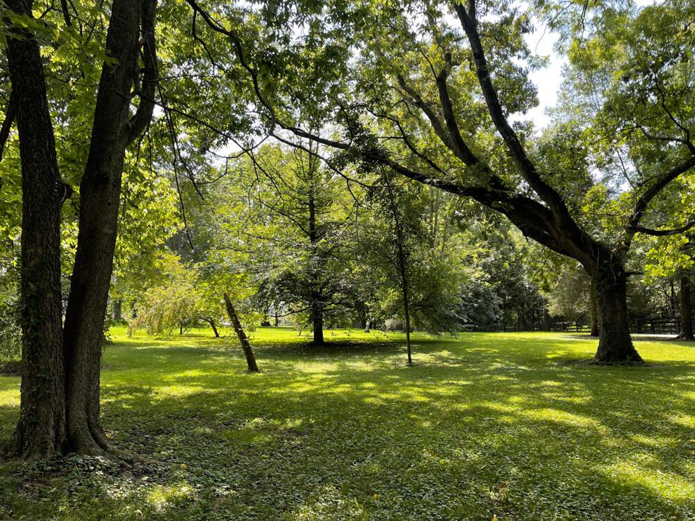 3375-3491 Briar Hill Road Property Photo 9