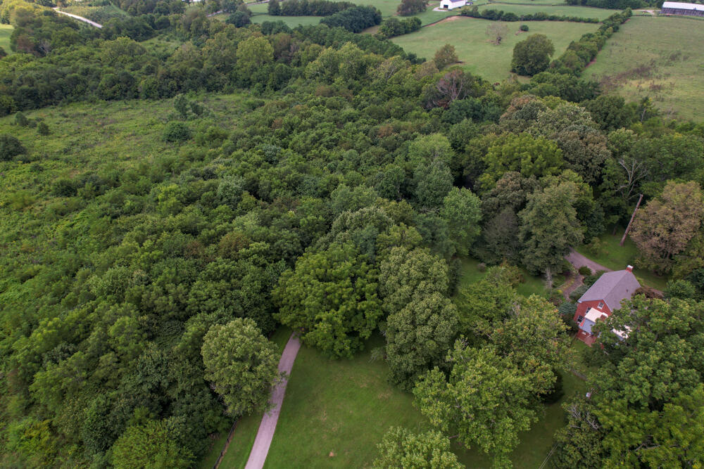 3375-3491 Briar Hill Road Property Photo 13
