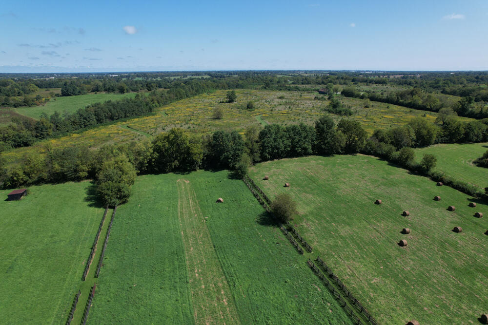3375-3491 Briar Hill Road Property Photo 86