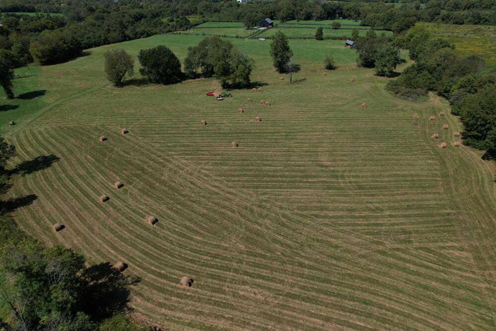 3375-3491 Briar Hill Road Property Photo 104