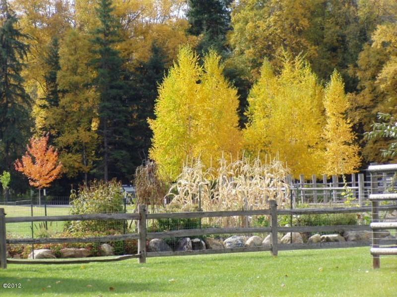 405 Delrey Road Property Photo 14
