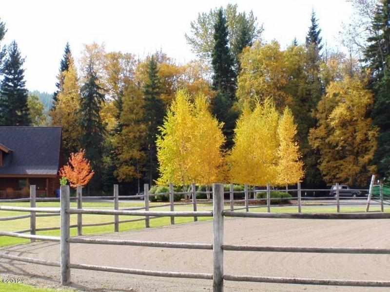 405 Delrey Road Property Photo 55