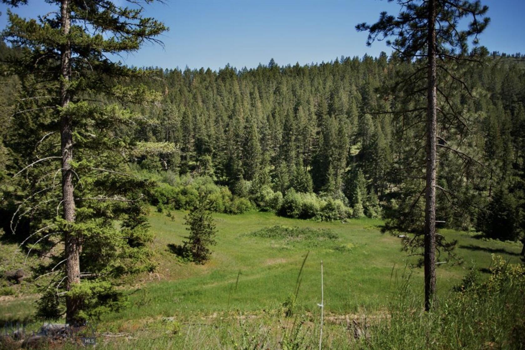 Tbd Eight Mile Creek Road Property Photo 1