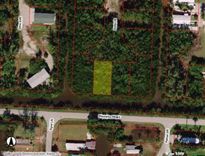 85 Hawk LN Property Photo - EVERGLADES CITY, FL real estate listing