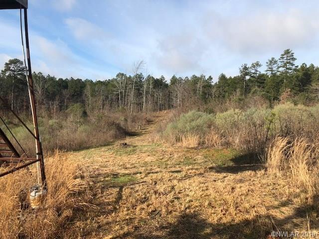 0 Ford Wallace Cutoff Road Property Photo - Plain Dealing, LA real estate listing
