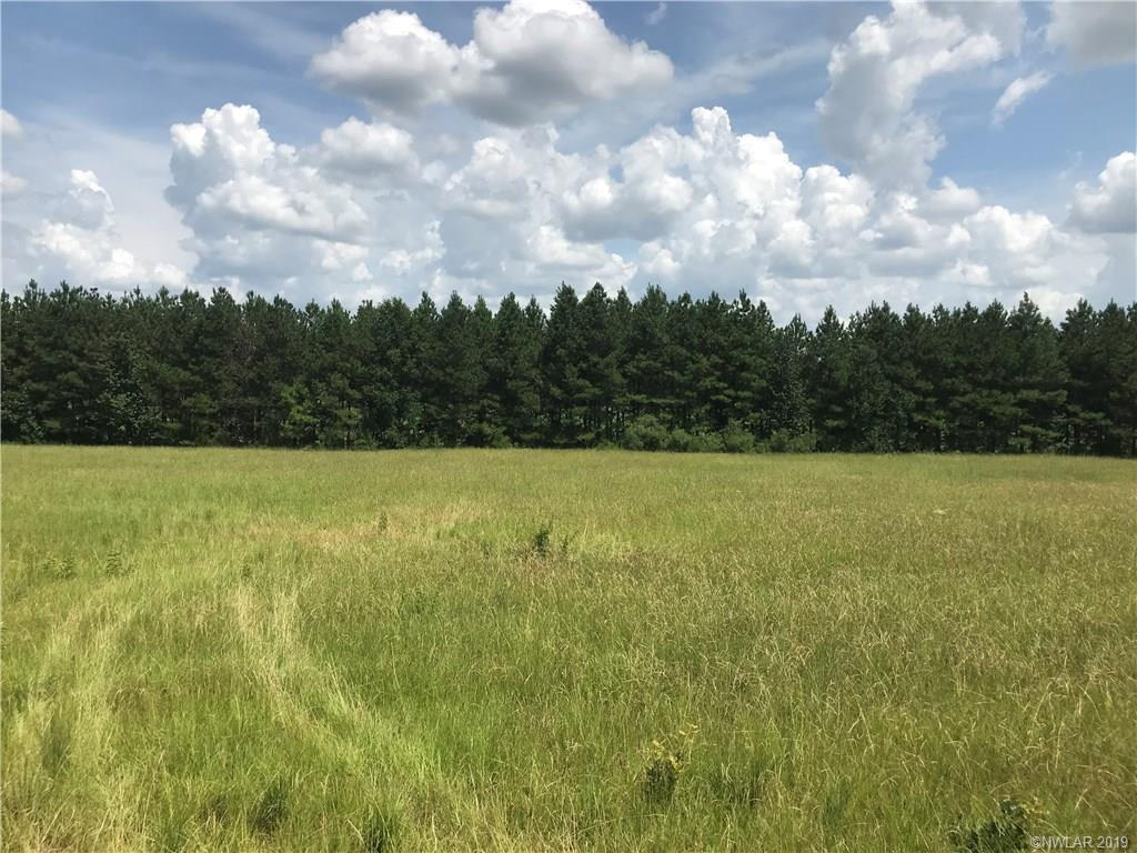 00 Lewisville Road #2 Property Photo - Minden, LA real estate listing
