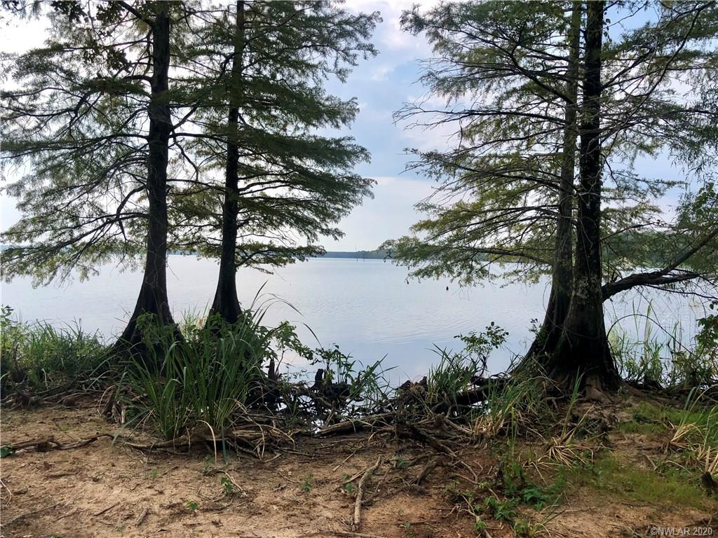 43 Whippoorwill Drive #43 Property Photo - Bradley, AR real estate listing