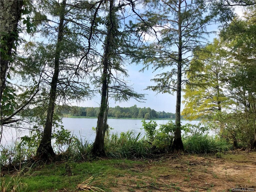 44 Whippoorwill Drive #44 Property Photo - Bradley, AR real estate listing