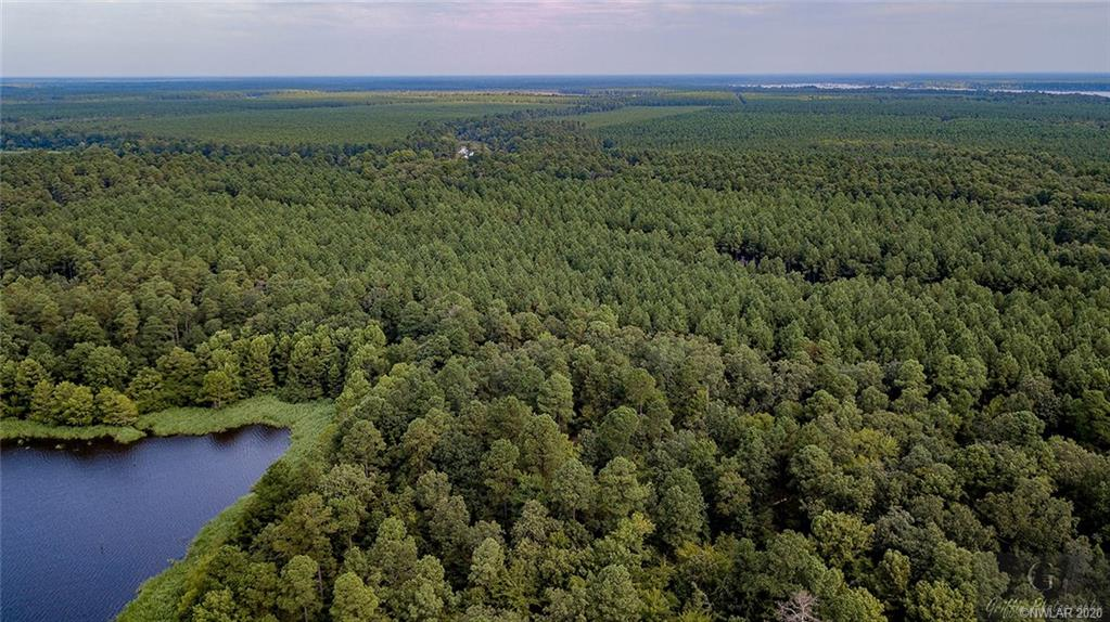 45 Whippoorwill Drive #45 Property Photo - Bradley, AR real estate listing