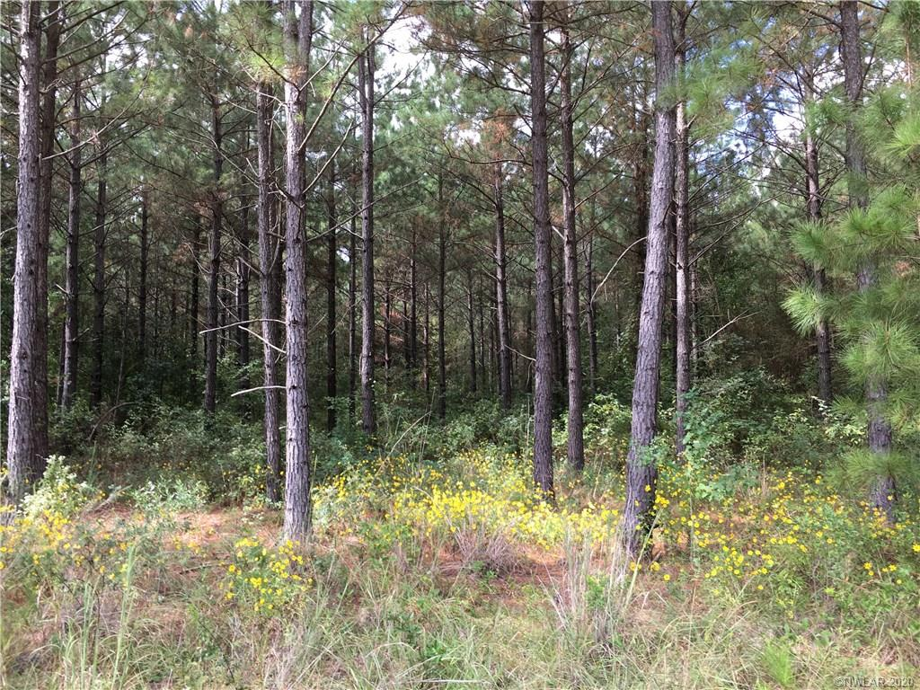 0 Rural Road Property Photo - Princeton, LA real estate listing