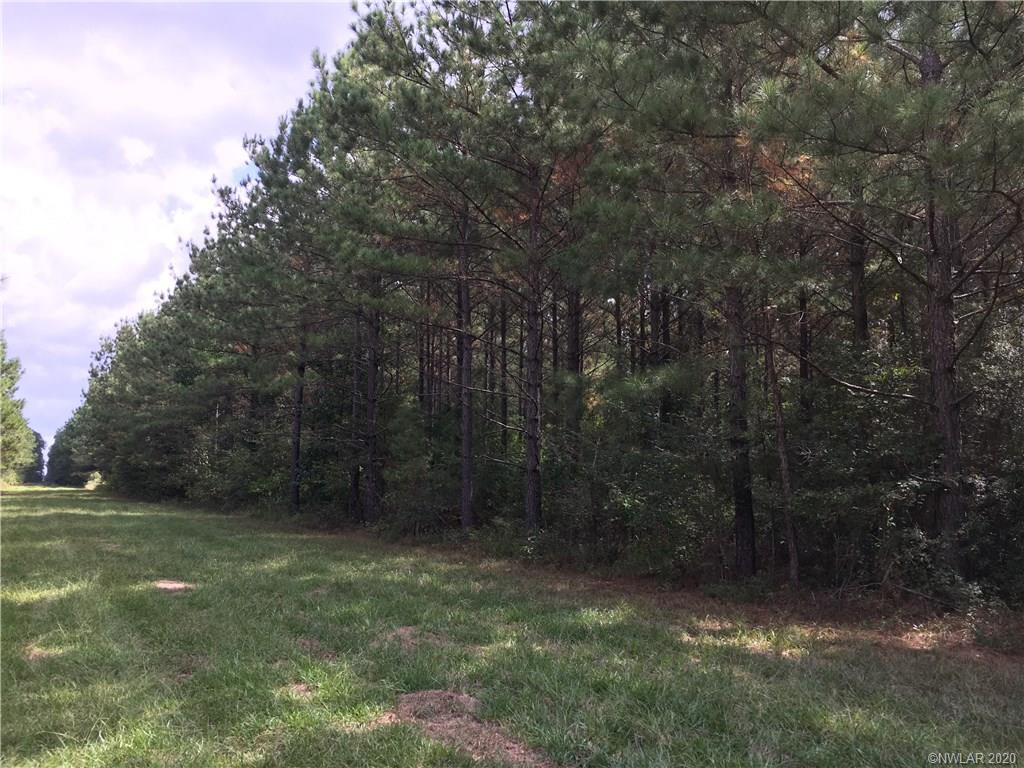 1 Rural Property Photo - Princeton, LA real estate listing