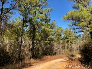 0000 Domino Road, Arcadia, LA 71001 - Arcadia, LA real estate listing