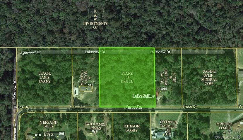 0 Bruce Drive Property Photo - Saline, LA real estate listing