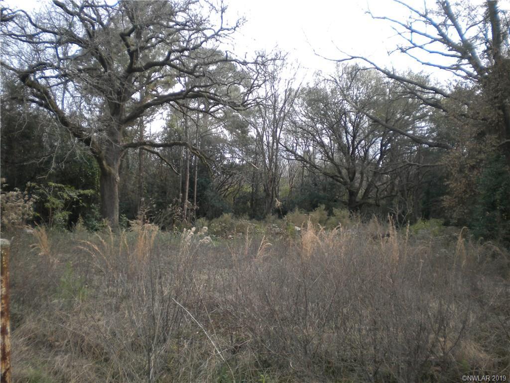0 Old Mansfield Road Property Photo - Logansport, LA real estate listing