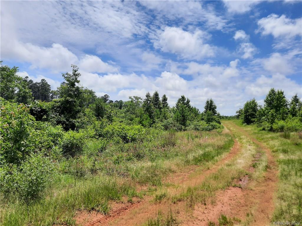 0 Highway 157 Property Photo - Springhill, LA real estate listing