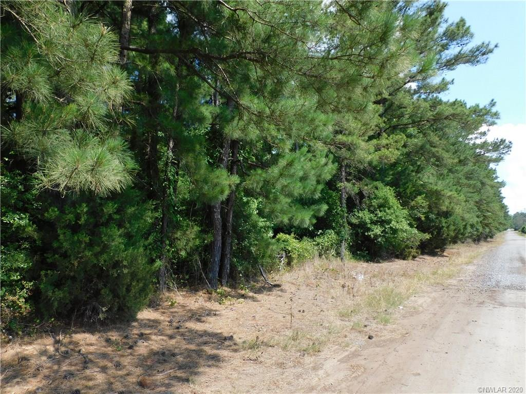 0 Speights Road Property Photo - Keatchie, LA real estate listing