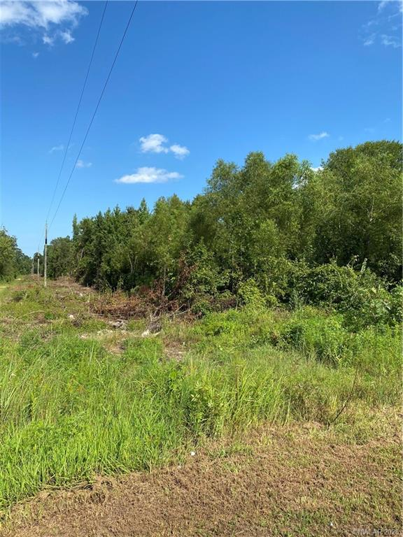 0 Alan Pvt Drive Property Photo - Gloster, LA real estate listing