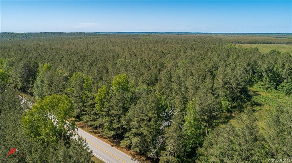 0 157 Highway #6 Property Photo