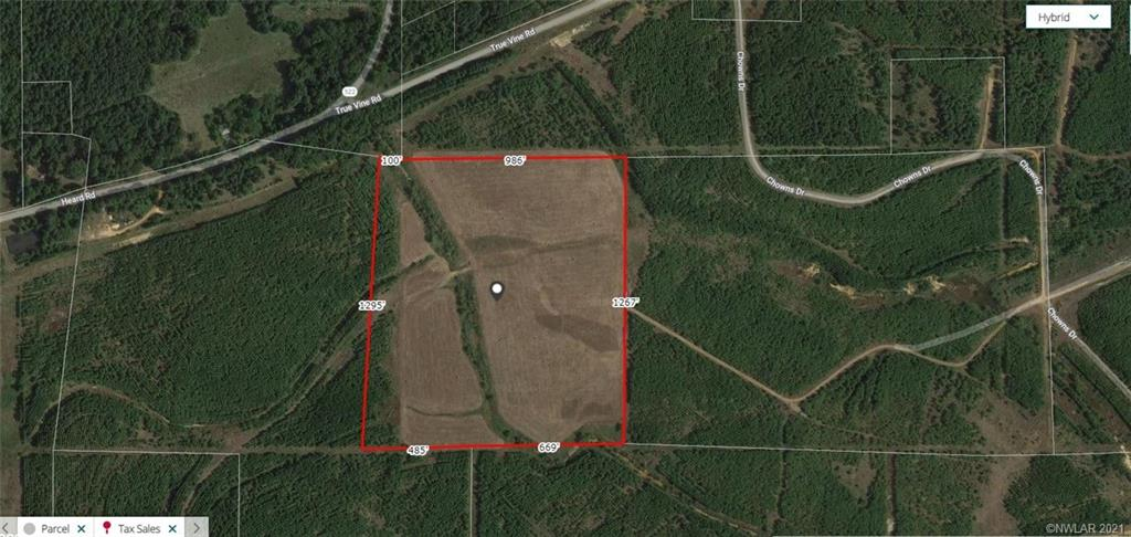 00 Chowns Drive Property Photo - Mansfield, LA real estate listing
