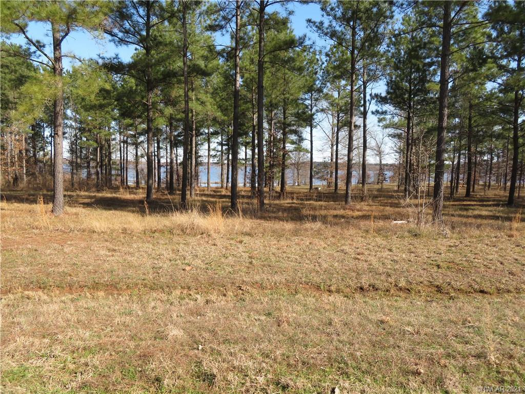 5 Eagle View North #5 Property Photo - Lewisville, AR real estate listing