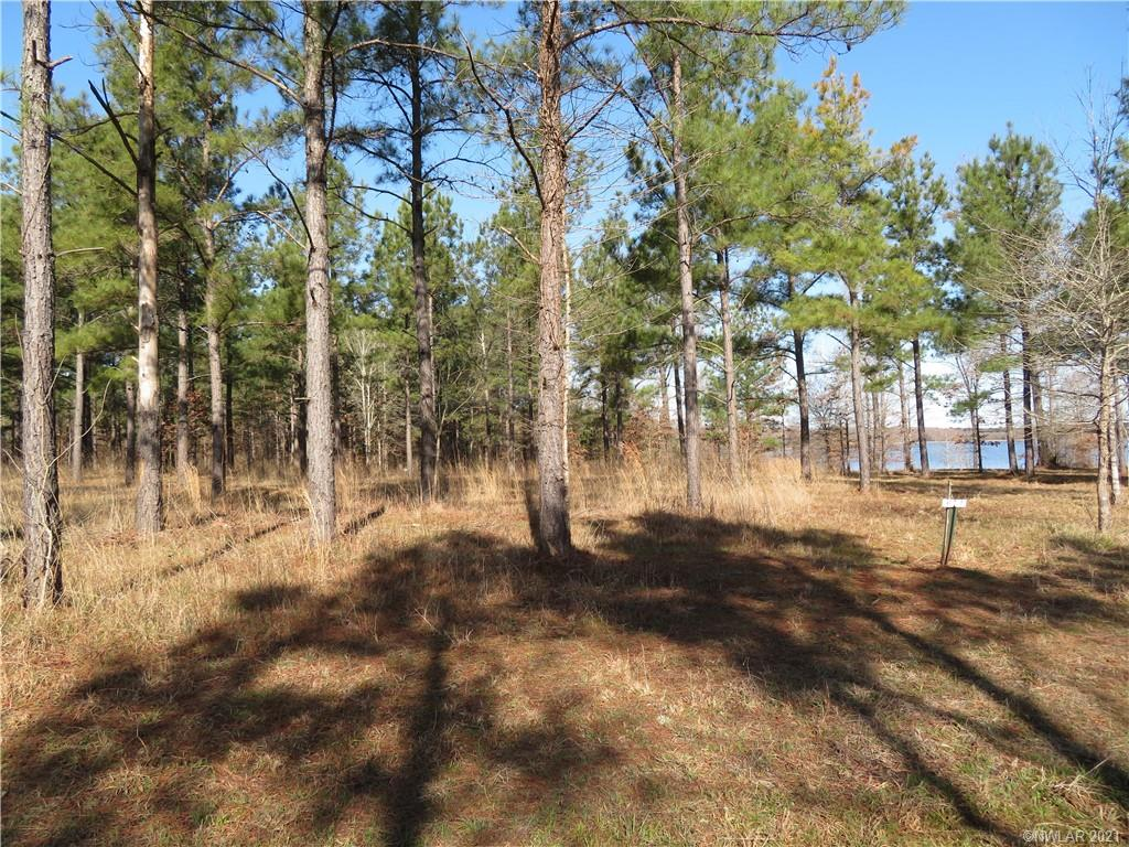 6 Eagle View North #6 Property Photo - Lewisville, AR real estate listing