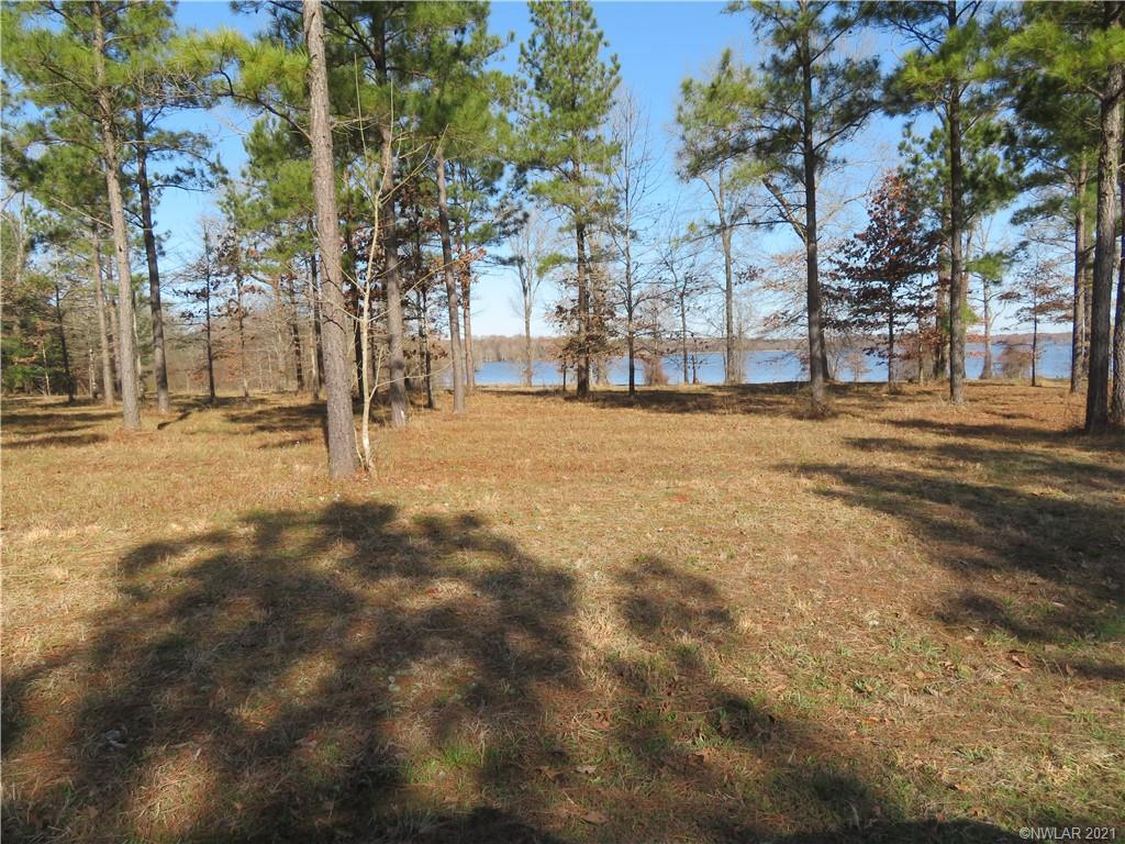 7 Eagle View North Property Photo - Lewisville, AR real estate listing