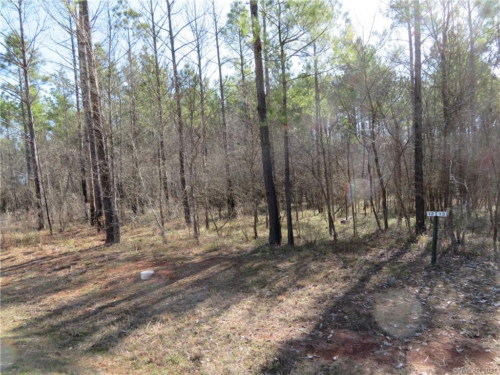 12 Eagle View North #12 Property Photo - Lewisville, AR real estate listing
