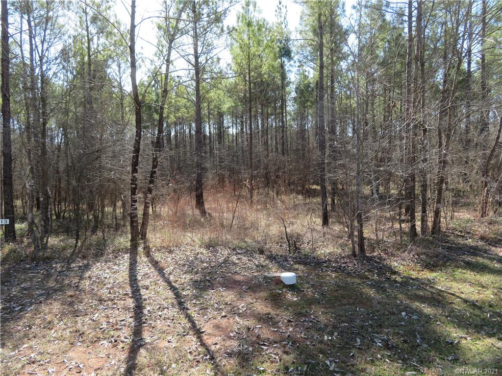 13 Eagle View North Property Photo - Lewisville, AR real estate listing