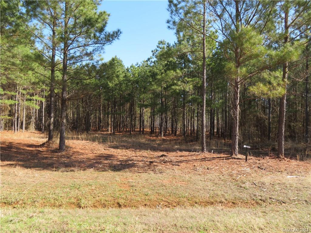 16 Eagle View North Property Photo - Lewisville, AR real estate listing