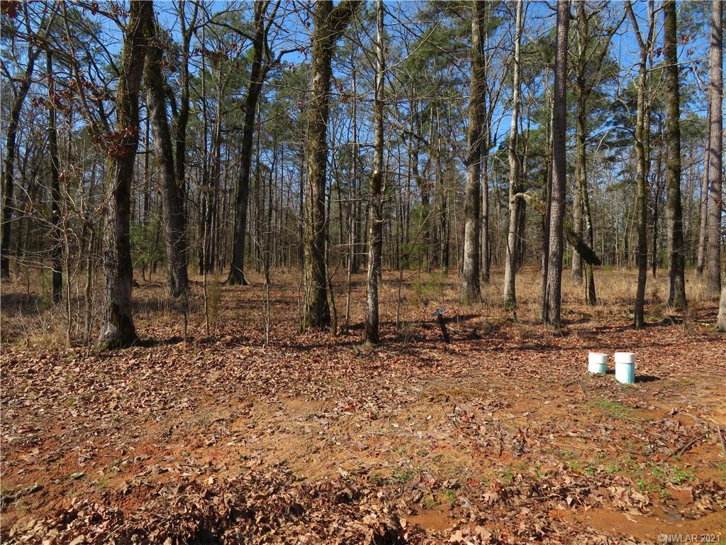 30 Eagle View South #30 Property Photo - Lewisville, AR real estate listing