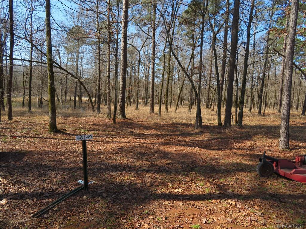 49 Eagle View South Property Photo - Lewisville, AR real estate listing