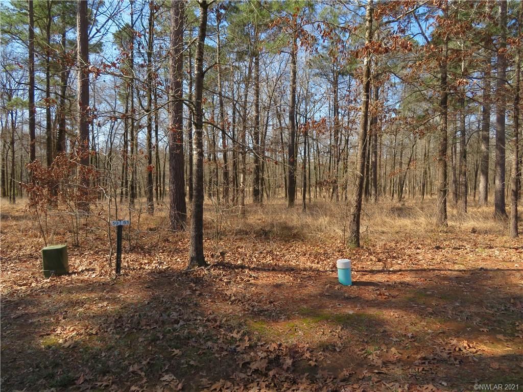 51 Eagle View South Property Photo - Lewisville, AR real estate listing