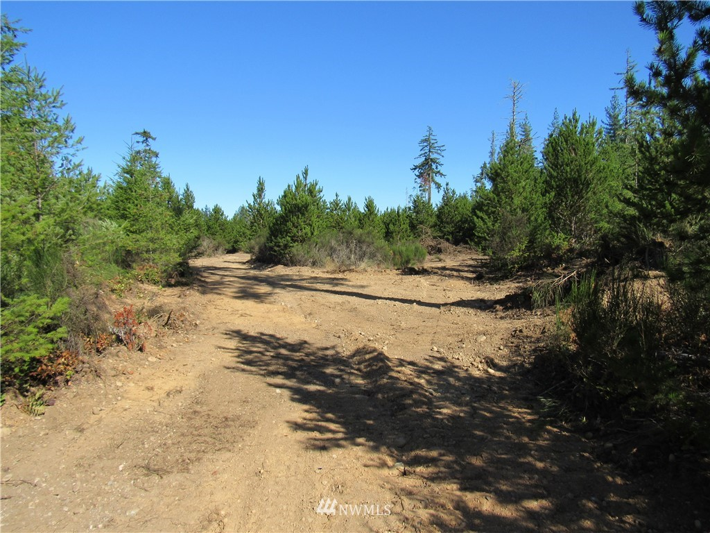 188 Acres W Old Camp Sundown (10 Tax Lots) Road Property Photo