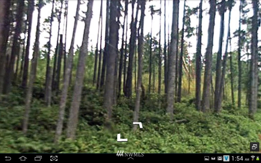 12622 Key Peninsula Highway N Property Photo