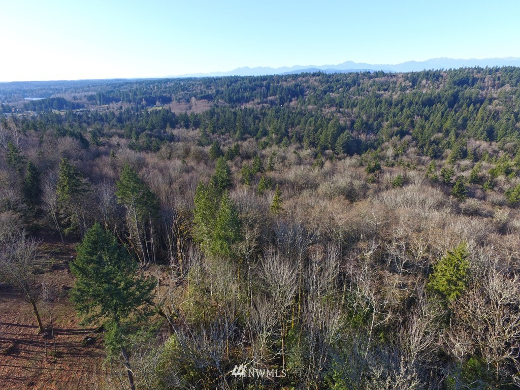 14 Forest View Lot 14 Lane Property Photo