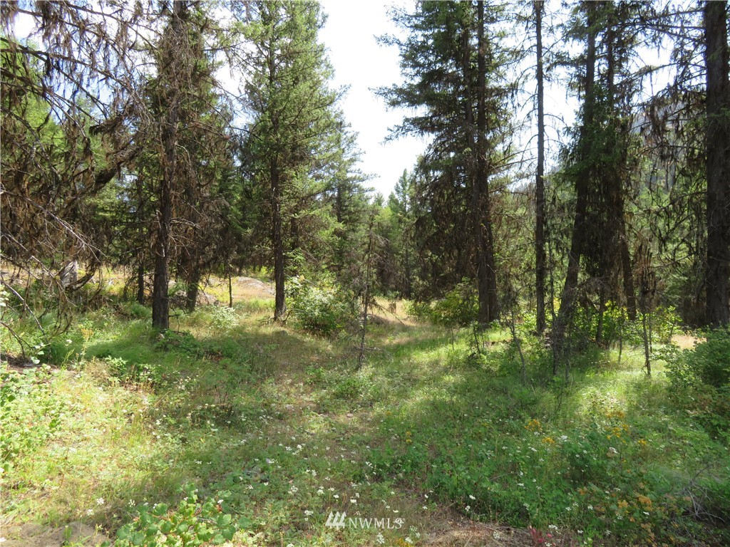 0 Tbd Bamber Creek Road Property Photo