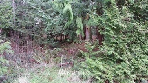 0 Oak Ridge Drive Property Photo