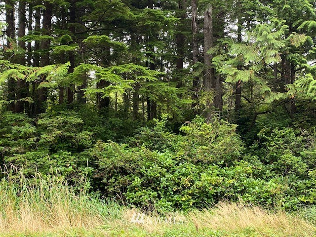 0 Lot 1 State Route 109 Property Photo