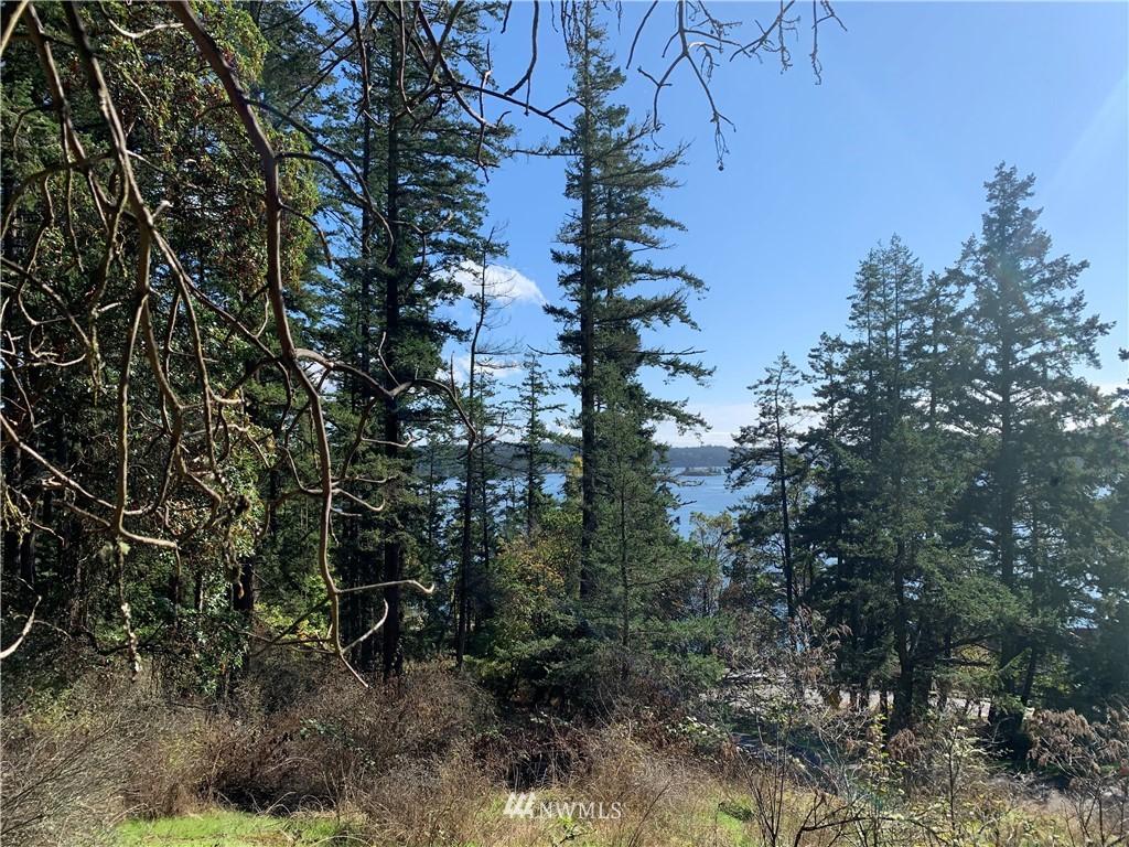 49 Killebrew Lake Road Property Photo