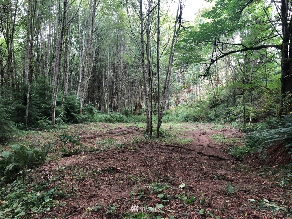 0 Forest View Lane Property Photo